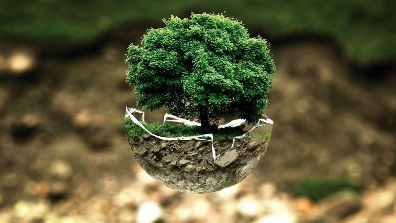 Les gestes du quotidien pour faire du bien à la planète