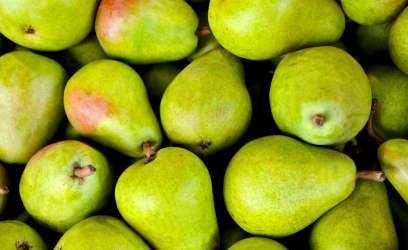 Les produits bio sont bénéfiques pour la santé